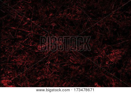 Abstraction, the abstract image of red grass. Surreal picture of grass. Red background.