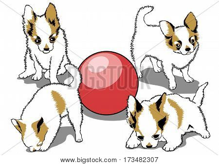 Vector set of dogs in different poses