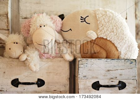 Valentines day love or relationship concept : Lovely sheep doll in the drawer