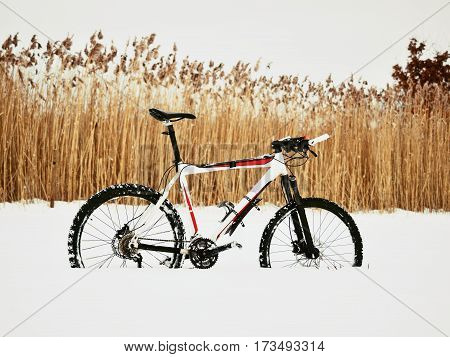 The  Mountain Bike Stay In Snow. Snow Melting On Dark Off Road Tyre.