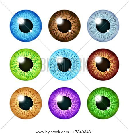 Realistic multi colored eyeball iris pupils set. Human color eyeball, illustration of eyeball green and blue