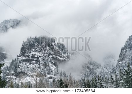Pleasant outlook over mountains covering with temperate forest topping with snow in Oregon