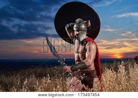 Powerful brave Spartan soldier with strong fit muscular body walking through the field holding his sword protecting himself with a shield copyspace war conflict fighter hero fearless concept.