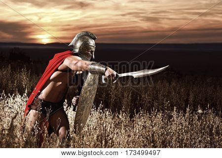 Sepia toned shot of a muscular Greek soldier fighting with a sword copyspace