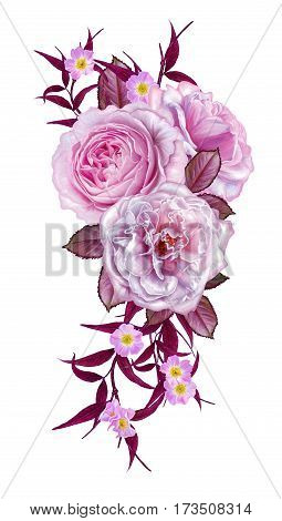 Flower composition. Bouquet delicate pink roses bright beautiful flowers dark red leaves and branches. Isolated on white background.