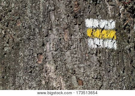 Tree bark texture with yellow turistic sign