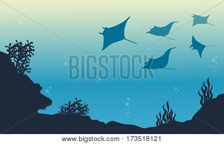 Silhouette of stingray and coral reef landscape vector art