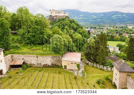Panoramic view over stadt salzburg with ancient castle and small house, vineyard, rainy day and mountains, austria