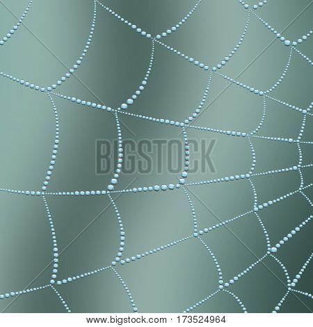 Spider web with water drops blur the background