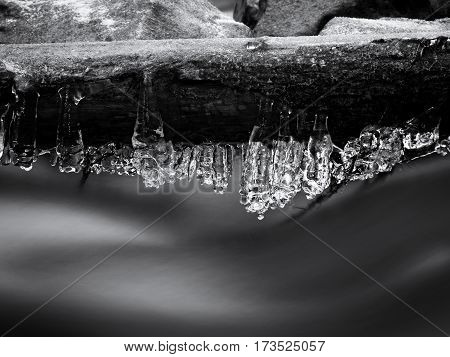 Long Icicles Hang Above Dark Freeze  Water Of Mountain Stream.