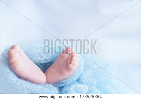 Newborn baby feet. Photo with selective focus and a soft natural light.