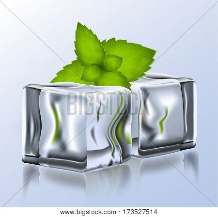 Two Bright Vector Ice Blocks With Mint.eps