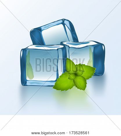 Vector Ice Blocks With Mint.eps