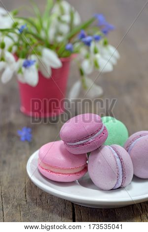 traditional french colorful macarons and spring flowers