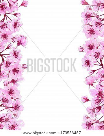 Cherry Blossom Borders