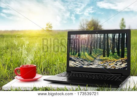 Laptop and cup of hot coffee on the background picturesque nature, outdoor office. Travel concept. The rest of nature. Beautiful landscape. The entrance to another world. Journey to fairytale.