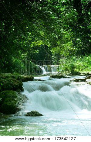 panorama view of nice waterfall in green tropic environment