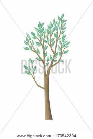 Tree with green leaves. Vector tree icon. Tree forest, leaf tree isolated, tree branch nature green, plant eco branch tree, organic natural wood illustration. Vector illustration
