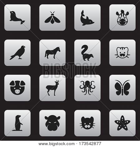 Set Of 16 Editable Zoology Icons. Includes Symbols Such As Playful Fish, Skunk, Honey And More. Can Be Used For Web, Mobile, UI And Infographic Design. poster