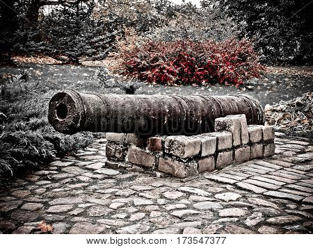 the barrel of the gun lies in a stone laying in the park, the nature, around bushes, trees and a grass, a stone path, a red bush on a background
