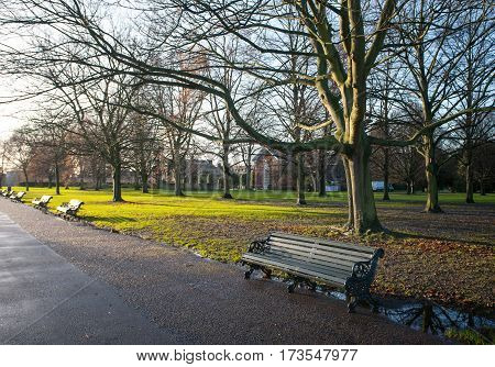Park old Bench in the Morning Light autumn