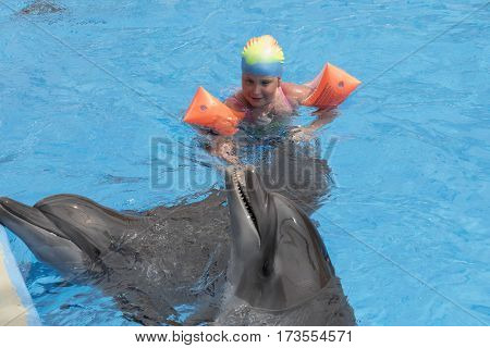 Little girl swim with two dolphins  in the pool