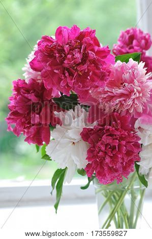 bouquete of red,pink and white peonies