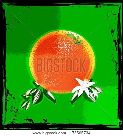 dark background, green abstract and the large orange with white flowers