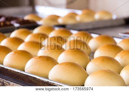 Bread Pandan Custard