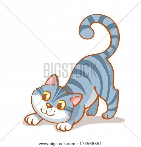 Happy cartoon cat, Portrait of cute  little grey kitten playing. Cat family  friend. Vector illustration. Isolated on white background.