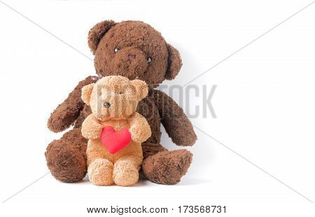 cute little teddy bear hold heart isolated on white background