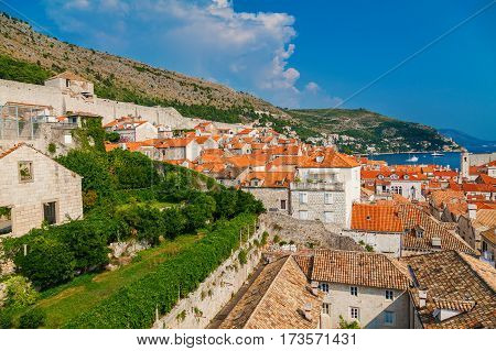 beautiful view of the Dubrovnik small houses from the city walls Croatia
