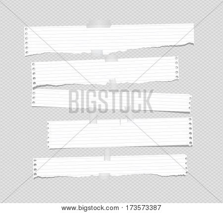 Pieces of torn notepad paper strips stuck on gray background.