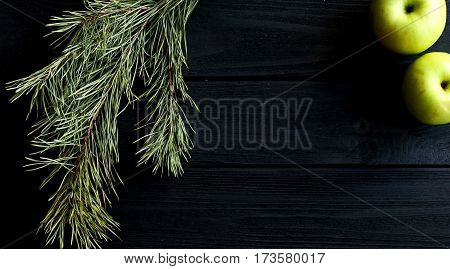 Dark background with bright forest branch. Green composition