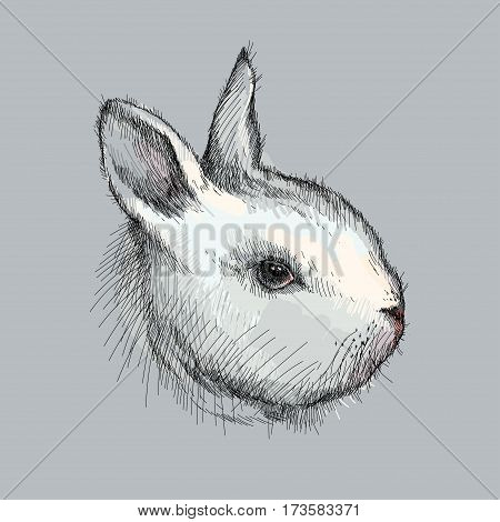 Vector graphic sketch of white baby rabbit profile on the gray background. Silhouette of decorative cute bunny head in lineart style. Symbol of Happy Easter.