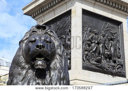 LONDON, GREAT BRITAIN - MAY 12, 2014: It is fragment of the sculpture of one of the lions at the foot of Nelson's Column.