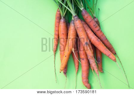 Fresh organic carrots with soil and greens, top view