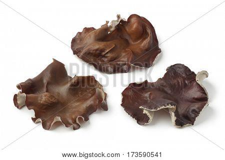 Fresh jelly ear mushrooms on white background