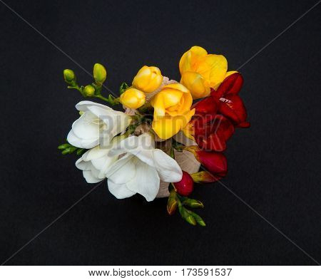 flowers of freesia white, yellow and red in a small vase on a black background, top view, like a postcard