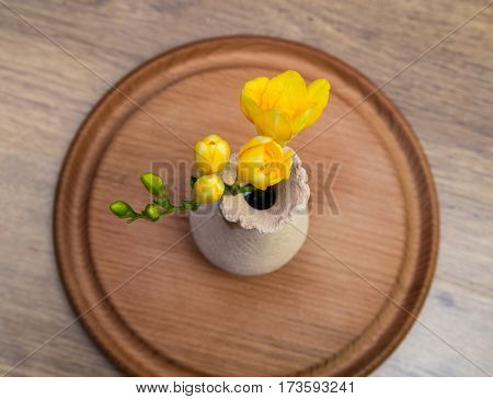 yellow freesia flowers in small ceramic vase on wooden stand, top view