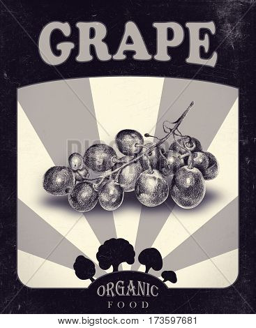 Flyer with grape drawn by hand with pencil. Retro design. Drawing with crayons. Fresh tasty berry painted from nature. Tinted black and white