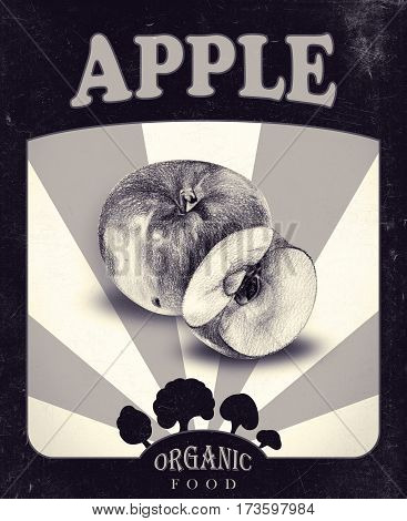 Flyer with apples drawn by hand with pencil. Retro design. Drawing with crayons. Fresh tasty fruits painted from nature. Tinted black and white