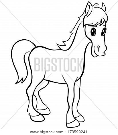 White horse isolated hand drawn vector stock illustration. Eps 10 vector illustration