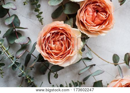 Beautiful beige and orange roses and decorative branches on white textured background, floral arrangement.