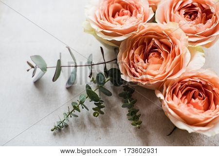 Beautiful beige and orange roses and decorative branches on white textured background, florial arrangement.