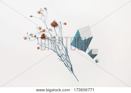 Wildflowers. Blue knapweed small envelope lie on white background. Three letters. Write a letter. Greeting card. Copyspace flat lay top view envelope.