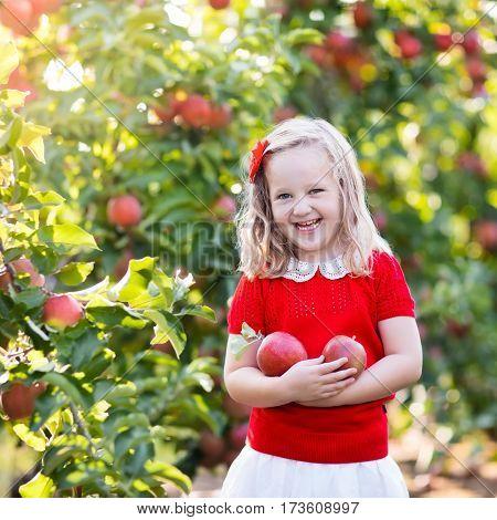 Little Girl Picking Apple In Fruit Garden