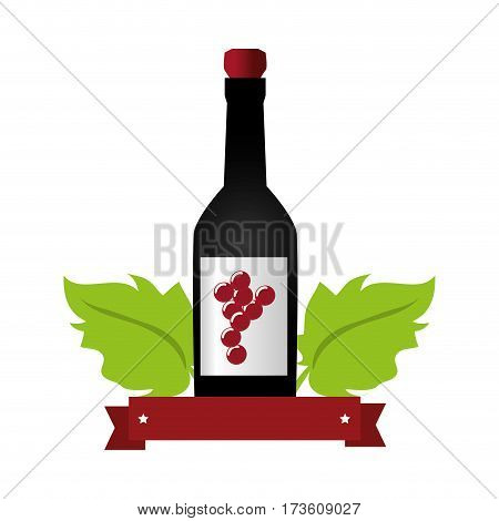 wine bottle with cork and grapes leaves and ribbon vector illustration