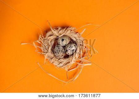 Quail Eggs In A Straw Nest On The Orange Background