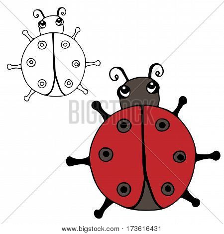 Cute ladybird isolated on the white background. For coloring book and other child design